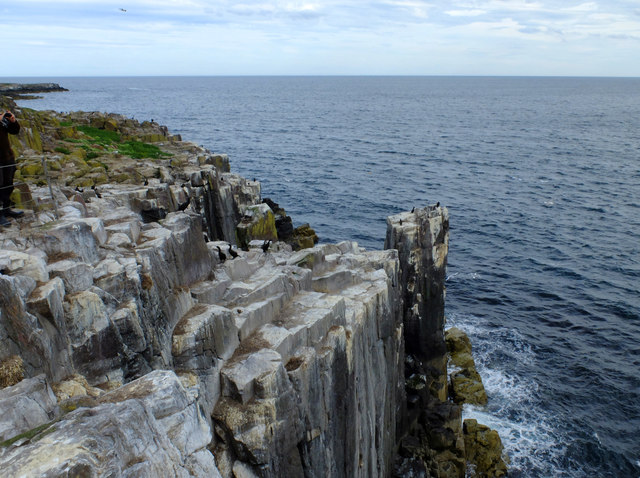 Cliffs on the south side of Inner Farne