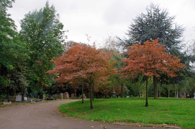 Signs of Autumn in Chingford Mount Cemetery