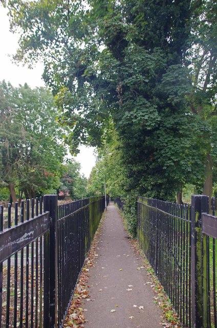 Fenced Cyclepath