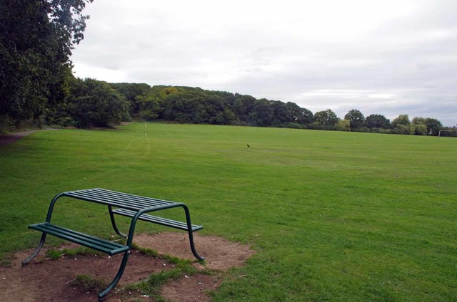 Playing Field by Larks Wood