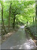 SX5594 : Dry Lane is not dry - it fords the Hookmoor Brook by David Smith