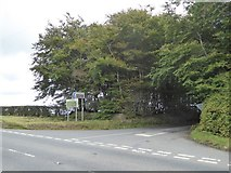 SX5694 : Hilltown Cross by David Smith