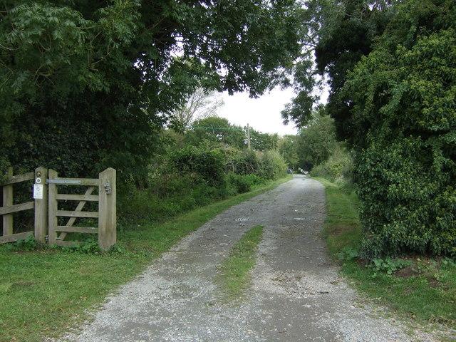 Track (footpath) near Staithe Farm