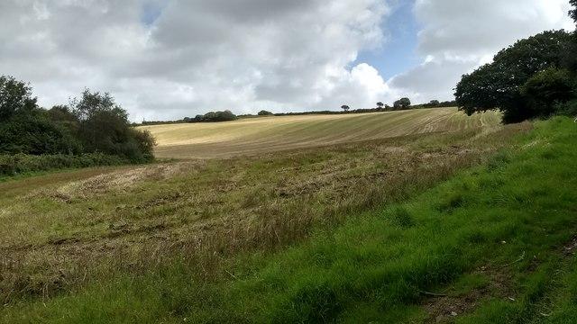 Harvested field near Retallack