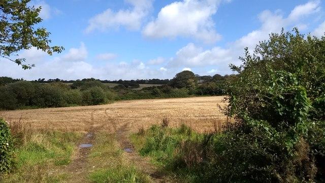 Field near Bostrase