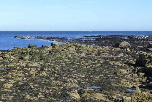 On Castlehead Rocks