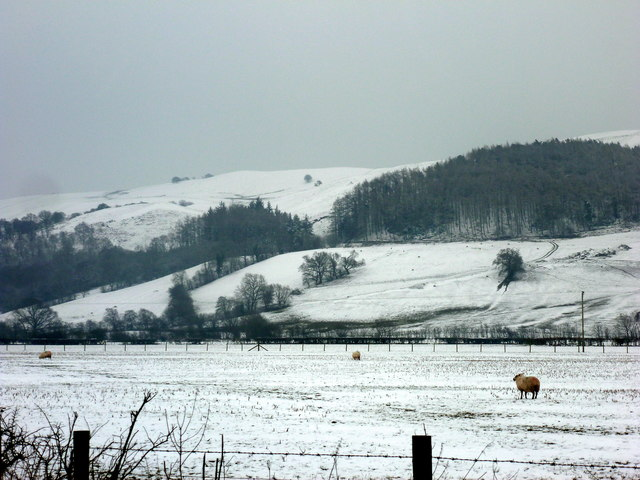 Snow covered pasture and hillside