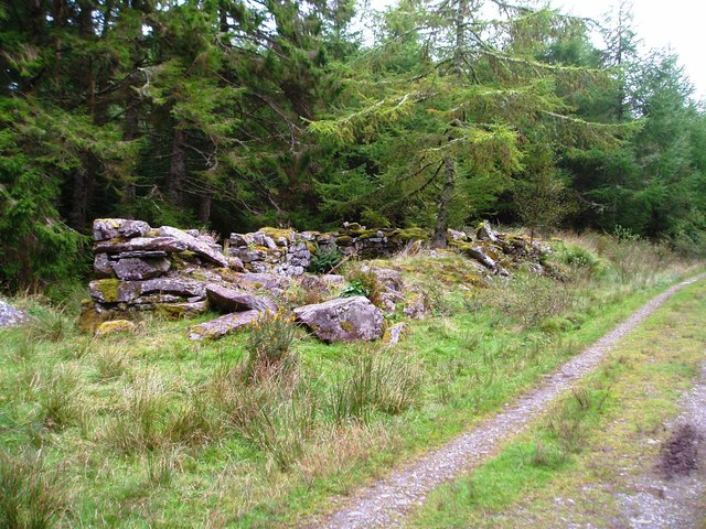 Ruin in the Forestry, Capel Curig