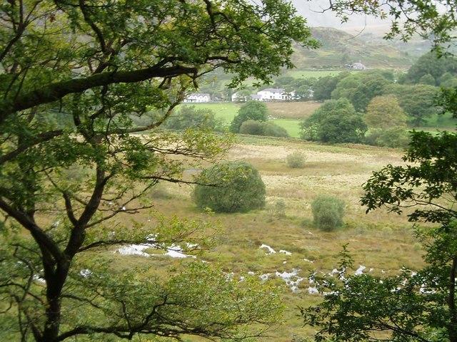Waterlogged Meadow, Capel Curig