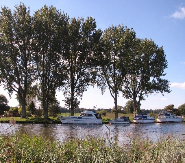 Boats moored on the River Yare
