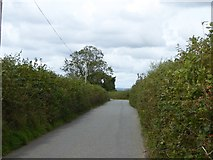 SX5497 : Road to Waytown by David Smith