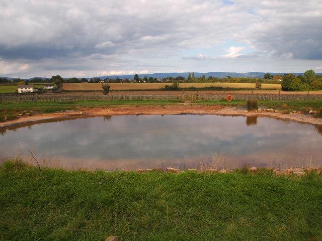 Pond Near Woodlands