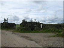 SX5598 : Scarecrow by track to farm at Westacombe by David Smith