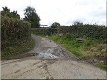 SX5599 : Track to farm at Westacombe by David Smith