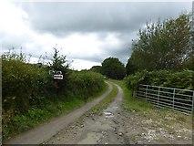 SS5401 : Track to Waterhouse farm  by David Smith