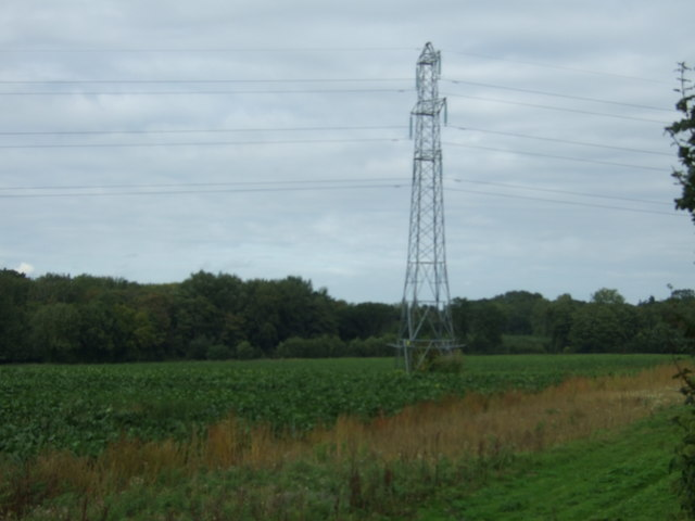Pylon in crop field, Heckingham