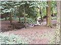 SJ8101 : Site Stream by Gordon Griffiths