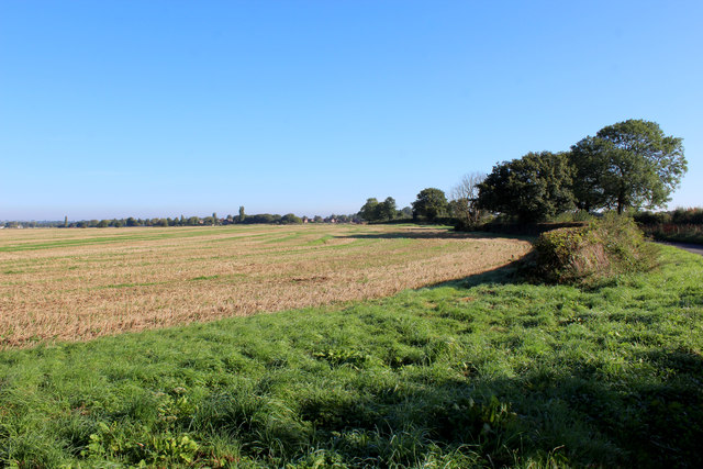 Country beside South Field Lane