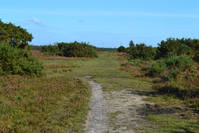 Path on Beaulieu Heath, near Hartford House