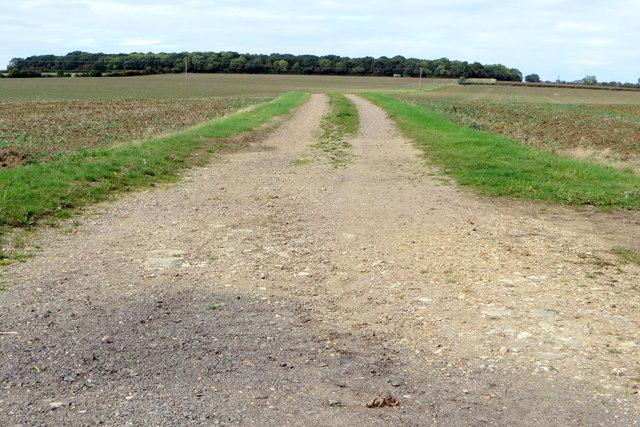 Farm track to Lavendon Wood