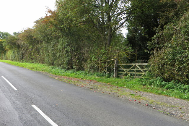 Apple strewn lay-by on Harrold Road