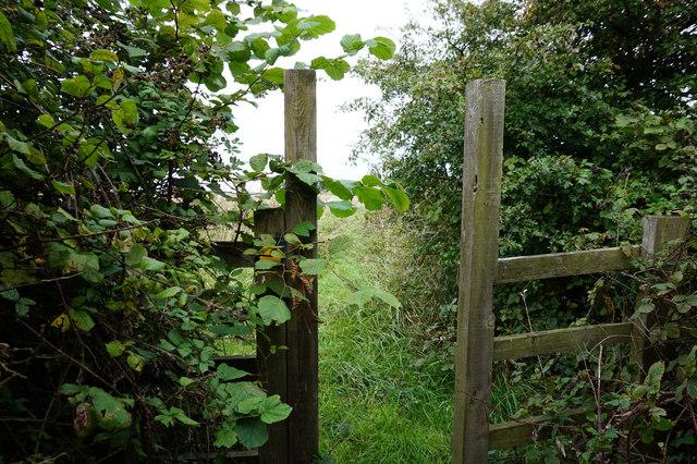 Path leading to Mauxhall Farm