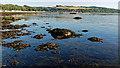 NH7053 : Avoch Bay, Black Isle : Week 39