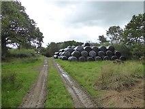 SS5401 : Bales stored north of Medland Farm by David Smith