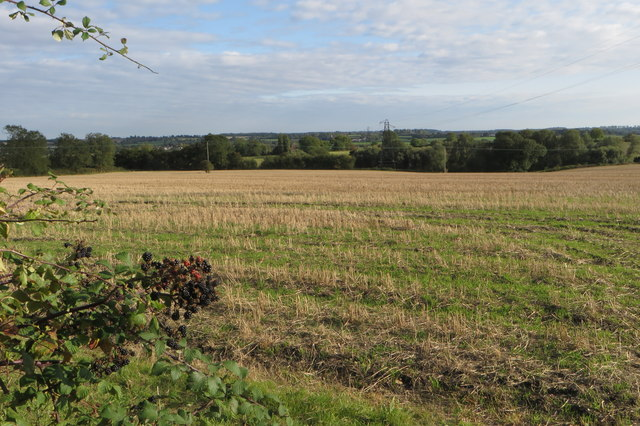 Stubble field by new road