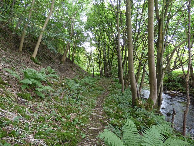 Path alongside the Marske Beck