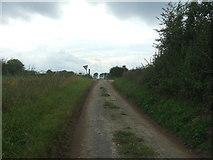TM4592 : Lily Lane, Aldeby by JThomas