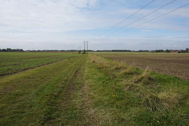 Farm track heading to Immingham