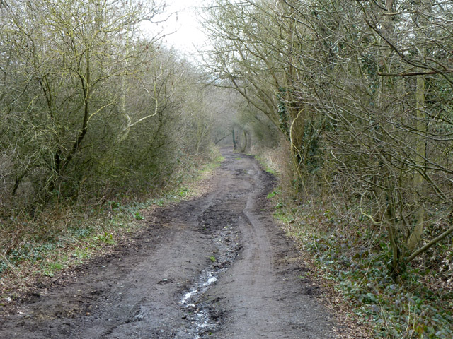 Burtonhole Lane