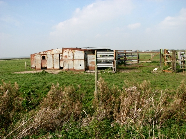 Shed and cattle pens in the Thurlton Marshes