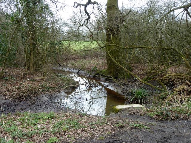 Culverted ditch under Burtonhall Lane