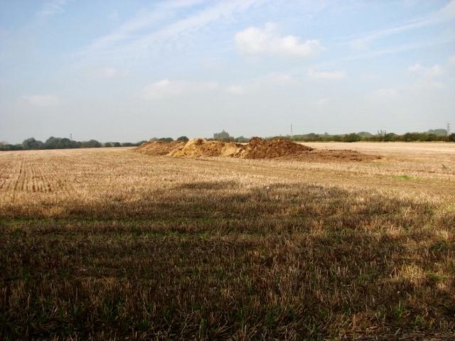 Muck heap in stubble field south of Holly Farm