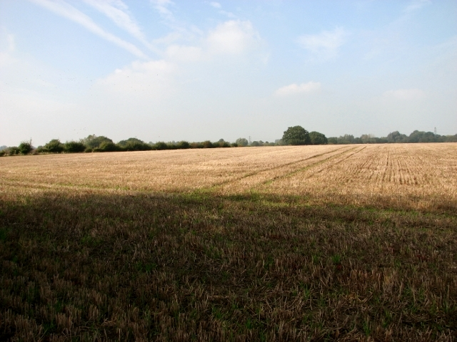 Stubble field east of Thurlton village