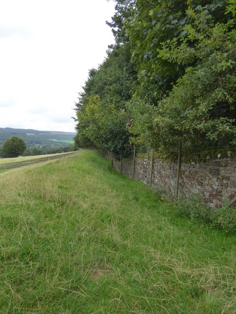 Wall and ditch boundary of New Piece Wood
