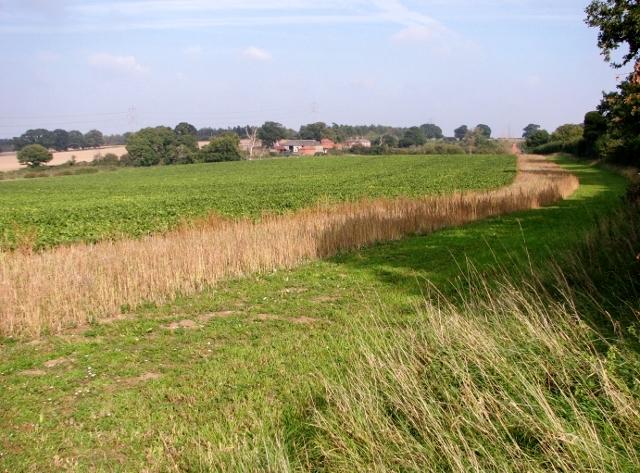 View towards Beacon Farm