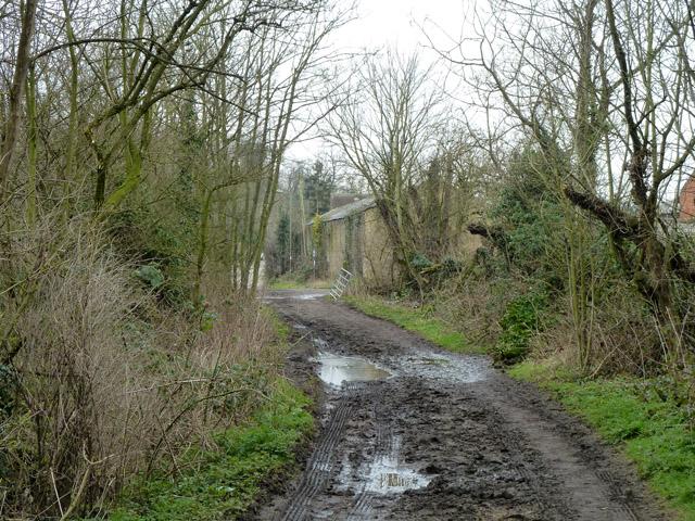 Burtonhall Lane