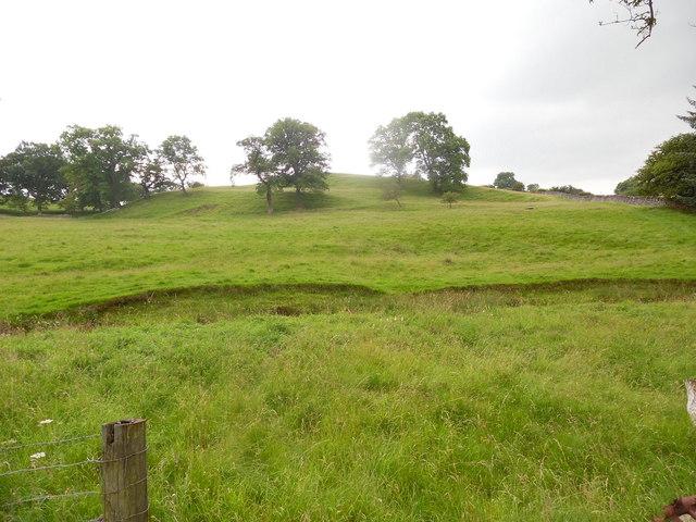 Field near Twiston Beck, Lancs