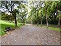 SD8303 : Heaton Park by Gerald England