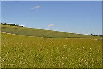 TL5335 : Fulfen Slade valley by N Chadwick