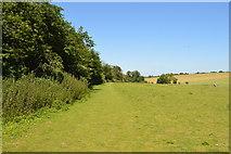 TL5336 : Beechy Ride by N Chadwick
