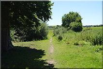 TL5336 : Harcamlow Way by N Chadwick