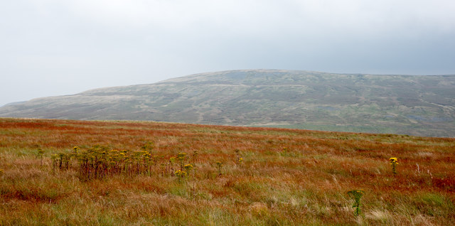 Moorland south of Round Hill