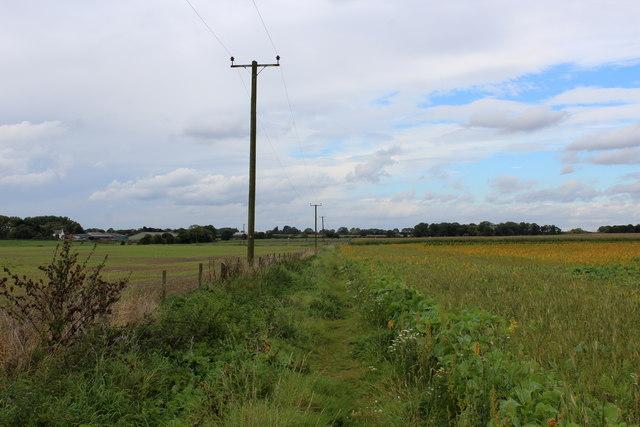 Path heading towards Waller House Farm