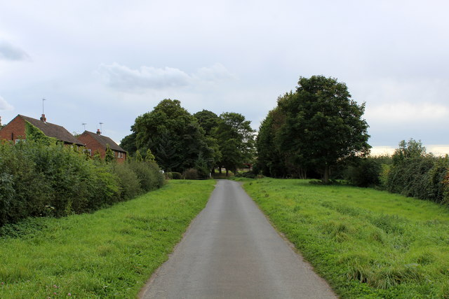 The Avenue heading towards Wighill