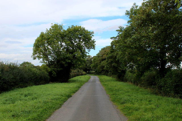 The Avenue heading North