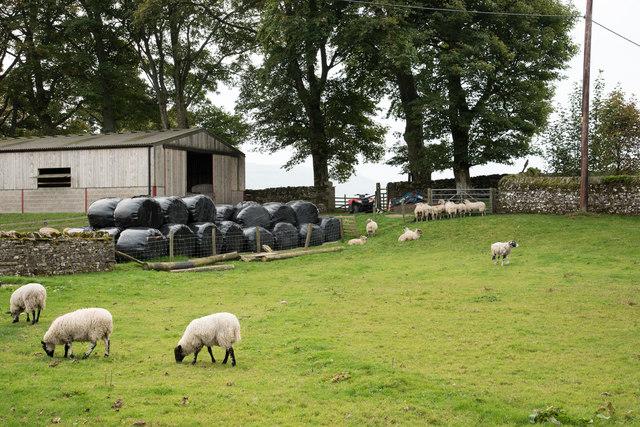 Barn, bales, bike and beasts